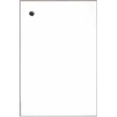 Preču etiķetes, birkas BLANC LUX (baltas) 50x70 mm, 150 gab.